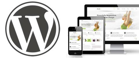 Waarom je voor een WordPress website zou moeten kiezen