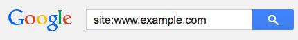 google site parameter
