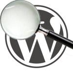 Die verschrikkelijke zoekfunctie van WordPress!