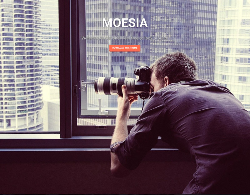 wordpress theme moesia