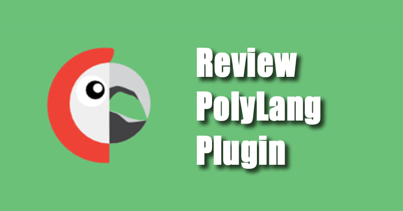Review Polylang plugin