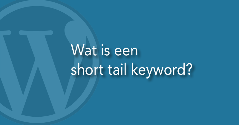 Wat is een short tail keyword?